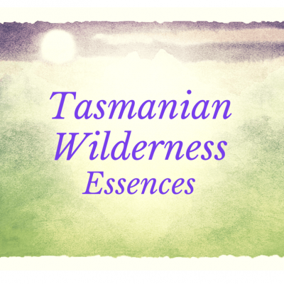 Tasmanian Wilderness Essences, 30mL and 15mL