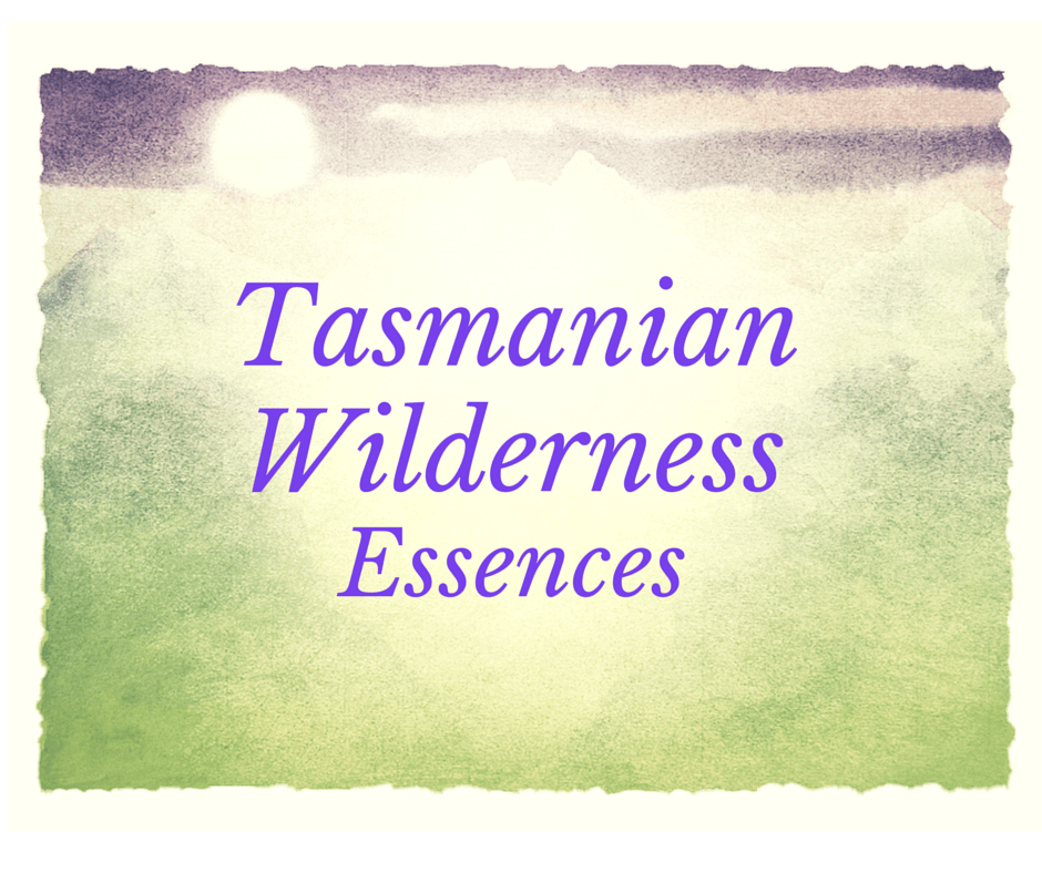 Tasmanian Wilderness Essences