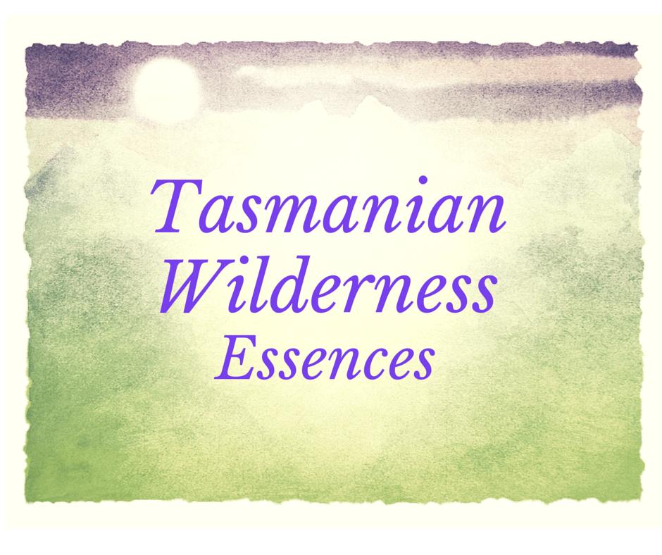 Tasmanian Wilderness Essences
