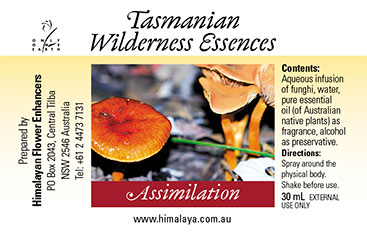 Assimilation, is part of the Tasmanian Wilderness Essences range.